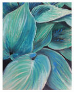 Plants Pastels Framed Prints - Hosta Framed Print by Thomas Dreesen