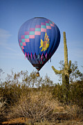 James Insogna Framed Prints - Hot Air Balloon Flight over the Lush Arizona Desert Framed Print by James Bo Insogna