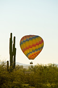 Colorful Photos Posters - Hot Air Balloon In the Arizona Desert With Giant Saguaro Cactus Poster by James Bo Insogna