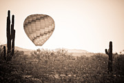 Stock Photo Photos - Hot Air Balloon On the Arizona Sonoran Desert In BW  by James Bo Insogna