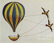 Aeronautic Framed Prints - Hot Air Balloon Framed Print by Science Source