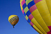 Flight Posters - Hot air balloons Poster by Garry Gay