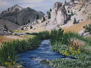 Hot Creek Art - Hot Creek by Barbara  Prestridge