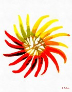 Hot Peppers Framed Prints - Hot Peppers Framed Print by Elizabeth Coats