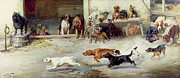 Springer Spaniel Paintings - Hot Pursuit by William Henry Hamilton Trood