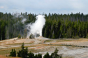 Jets Photos - Hot Steam Dog Yellowstone National Park WY by Christine Till
