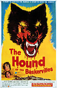 1950s Poster Art Framed Prints - Hound Of The Baskervilles, Hammer Framed Print by Everett
