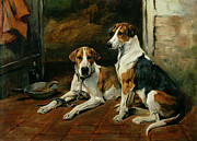 Hounds Metal Prints - Hounds in a Stable Interior Metal Print by John Emms