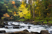 Autumn Scenes Prints - Housatonic River Print by Bill  Wakeley