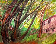 Suburban Drawings - House and Trees by Don Schaeffer