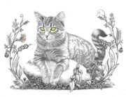 Animals Drawings - House Cat by Murphy Elliott