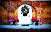 Door Photos Framed Prints - House Door 10 in Charleston SC  Framed Print by Susanne Van Hulst