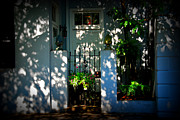Pineapples Prints - House Door 11 in Charleston SC  Print by Susanne Van Hulst