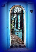 Blue House Prints - House Door 4 in Charleston SC  Print by Susanne Van Hulst