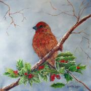 Finch Originals - House Finch In Winter by Loretta Luglio