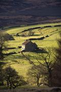 Farm Houses Posters - House In Countryside, North York Moors Poster by John Short
