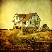 Sonya Kanelstrand Prints - House in dandelion paradise Print by Sonya Kanelstrand