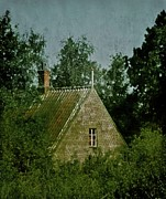 Old House Photos - House In The Trees by Odd Jeppesen