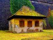 Germany Prints - House Print by Roberto Alamino