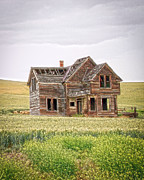 Montana Digital Art - House by Steve McKinzie
