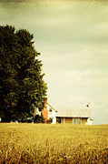 Southern Living Photos - House with Big Tree by Kim Fearheiley