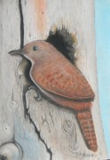 Knot Hole Prints - House Wren on a Pine Knot Print by David Merritt