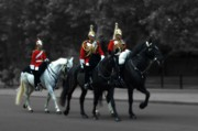 Household Cavalry Framed Prints - Household Cavalry Framed Print by Chris Day
