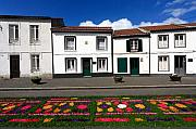 Gaspar Avila Framed Prints - Houses in the Azores Framed Print by Gaspar Avila