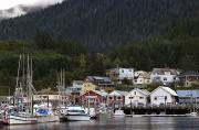Evergreen Trees Posters - Houses Line Ketchikan Harbor Poster by Melissa Farlow