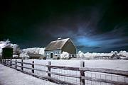 Infrared Originals - Hovander Homestead 3 by Julius Reque