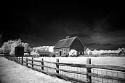 Infrared Originals - Hovander Homestead 3b by Julius Reque