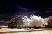 Infrared Originals - Hovander Homestead 4 by Julius Reque