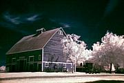 Infrared Originals - Hovander Homestead 7 by Julius Reque
