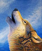 Coyote Framed Prints - Howl Framed Print by Brian  Commerford