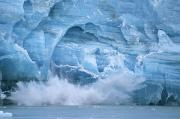 Water Splashes Framed Prints - Hubbard Glacier Calving Chunks Of Ice Framed Print by Michael Melford