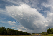 Huge Photo Prints - Huge Cloud Yellowhead Print by David Kleinsasser