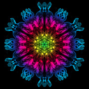 Vivid Colour Prints - HuMandala 3 Print by David Kleinsasser