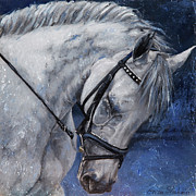 Dressage Art - Humble Beauty by Enzie Shahmiri