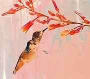 Tiny Bird Prints - Hummer Art Print by Fraida Gutovich
