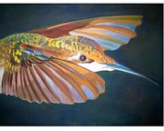Hummingbird Pastels - Humming Bird by Sandy Slichter