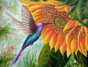 Sunflower Paintings - Humming For Nectar by David G Paul