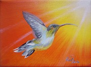 Hummingbird Paintings - Hummingbird by Beata Rosslerova