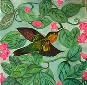 Hummingbird Paintings - Hummingbird by Brooke F Boyce