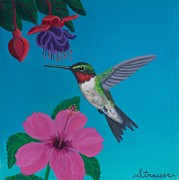 Ruby-throated Hummingbird Prints - Hummingbird Heaven Print by Frank Strasser