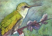 Artist Trading Cards Art - Hummingbird by Lisa Bell