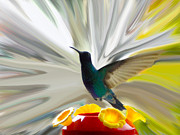 Sparkling Framed Prints - Hummingbird Series VII Framed Print by Al Bourassa
