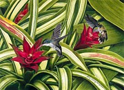 Hummingbird Paintings - Hummingbirds and Bromiliad by Kathy Woolington