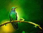 Oil Pastel Digital Art - Hummingbirds Perch by Dale Jackson