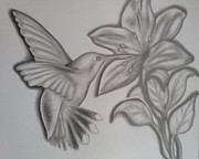 Flyers Drawings - Hummingbirds by Rick Hill
