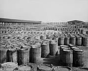 Commodities Art - Hundreds Of Barrels On The Wharf by Everett